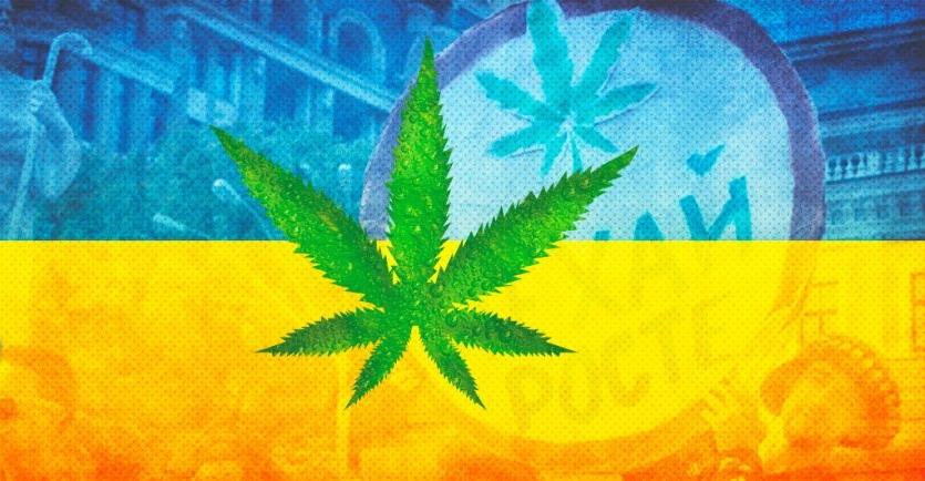 В Украине легализовали марихуану!