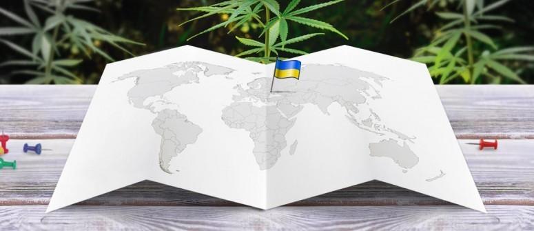 Почему в Украине хотят легализовать Медицинскую марихуану?