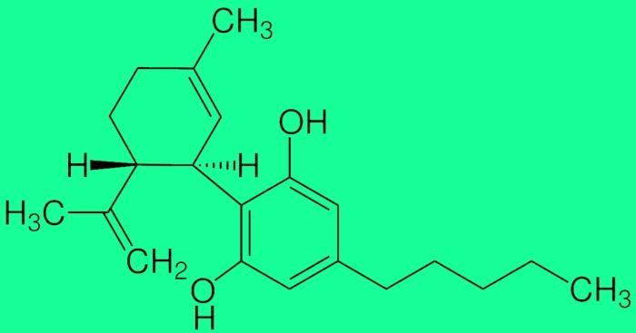лечение эпилепсии коноплёй, марихуана и эпилепсия, конопля и эпилепсия, лечение эпилепсии коноплёй, кбд, cbd, каннабидиол,