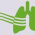 asthma, cannabis CB1R, cbd, marijuana, medical cannabis, medical marijuana, smoking cannabis, smoking marijuana, weed, астма, использование марихуаны, исследования, исследования Дельта-9-ТГК, исследования КБД, исследования марихуаны, исследования ТГК и КБД, каннабис, конопля, курение конопли, лечение, лечение марихуаной, марихуана, медицинская марихуана, медицинский каннабис, медицинское исследование, международный опыт, научно доказано, научное исследование, новости, новости конопли, новости медицинской марихуаны, опыт, опыт врачей, опыт пациентов, ТГК, применение марихуаны, медицинское назначение каннабиса,