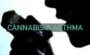 Курение каннабиса и астма ч.2