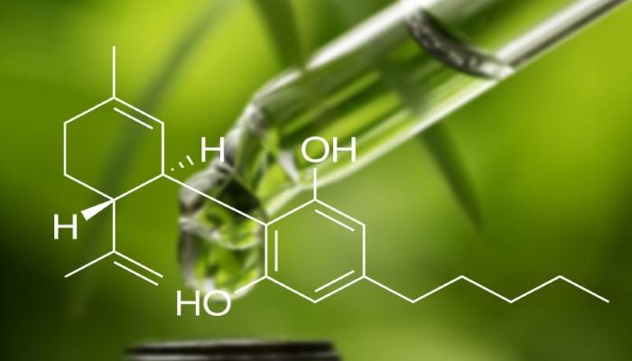 cbd, кбд, каннабидиол, что такое кбд, кбд это, всё о кбд, масло кбд это, что такое каннабидиол, каннабидиол это, каннабидиол масло, cannabidiol, cannabidiol to, and cannabidiol,of cannabidiol in, weed, марихуана, тгк, конопля, каннабис, каннабиноид, cannabinoid,