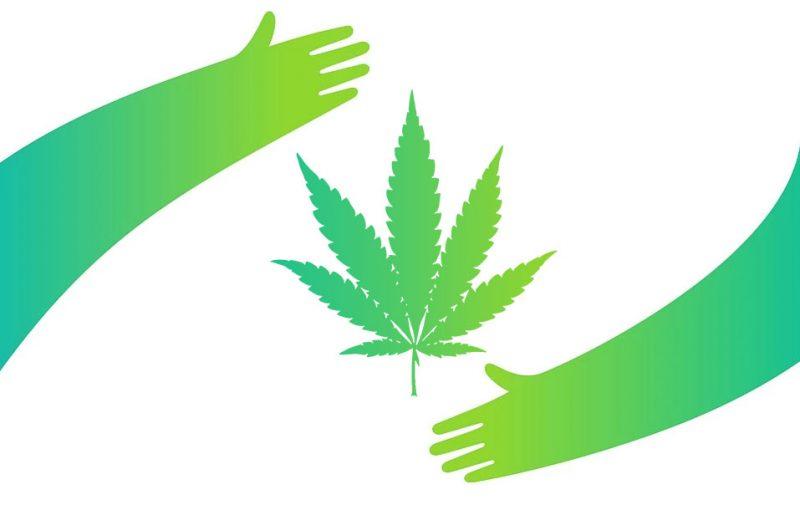 Как марихуана влияет на иммунитет?