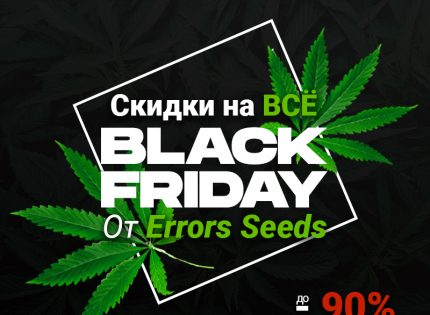 Black Friday вместе с Errors Seeds!
