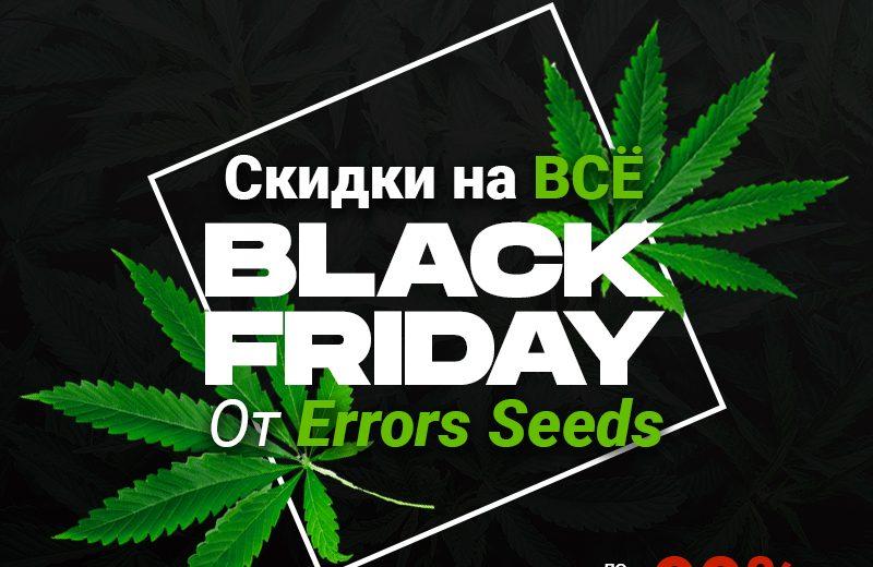 Черная пятница с Erros Seeds